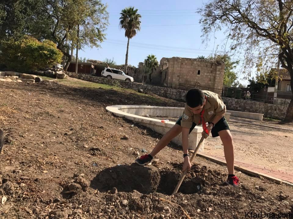 כפר אוריה - נטיעות טו בשבט - בפרואר 2017 8