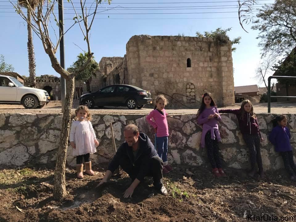 כפר אוריה - נטיעות טו בשבט - בפרואר 2017 9